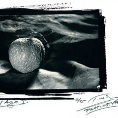 P. W. Haas a staré fotografické techniky
